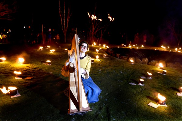 FREE PIC- Burns Fire And Light Fest Alloway 04